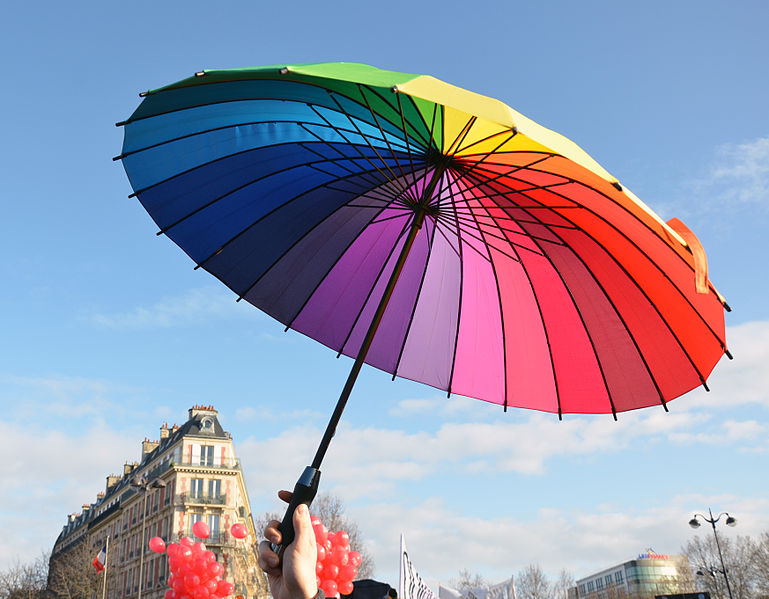Marriage equality demo in Paris in 2013 - Wikimedia commons